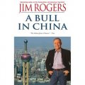 A Bull in China: Investing Profitably in the World s Greatest Market [平裝] (投資中國)