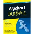 Algebra I For Dummies [平裝] (傻瓜書-代數 I 第2版)