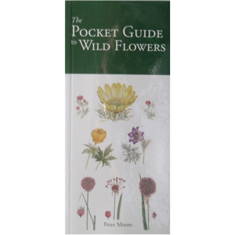 The Pocket Guide Wildflowers