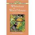 Whitefoot the Wood Mouse: In EasytoRead Type